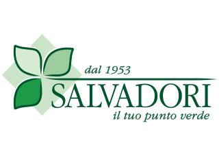 salvadori